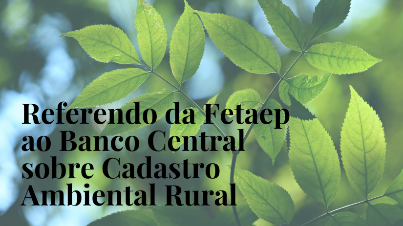 Fetaep emite referendo ao Banco Central sobre o CAR