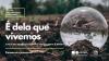 Ilustração em miniatura da noticia Dia Mundial da Terra